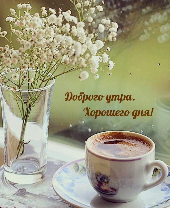 Доброго утра. Хорошего дня!