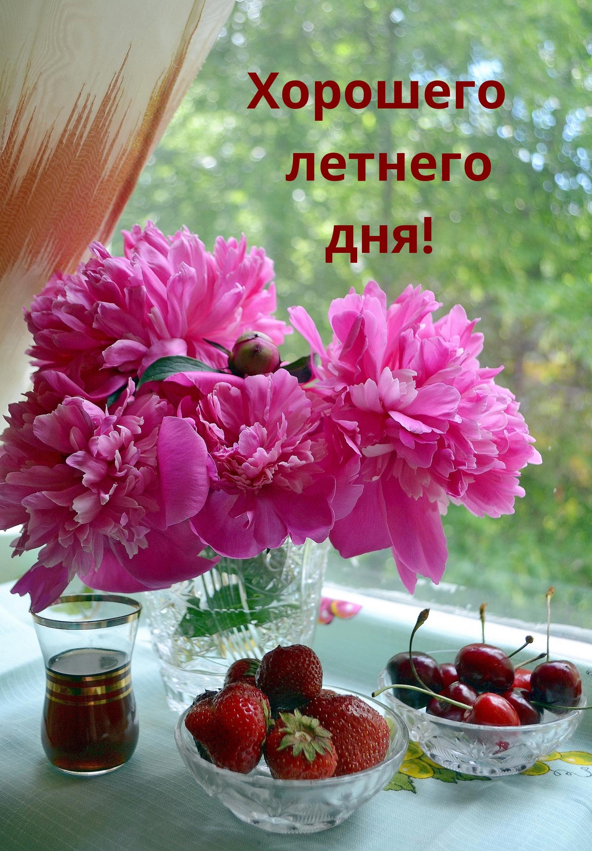 Хорошего летнего дня!