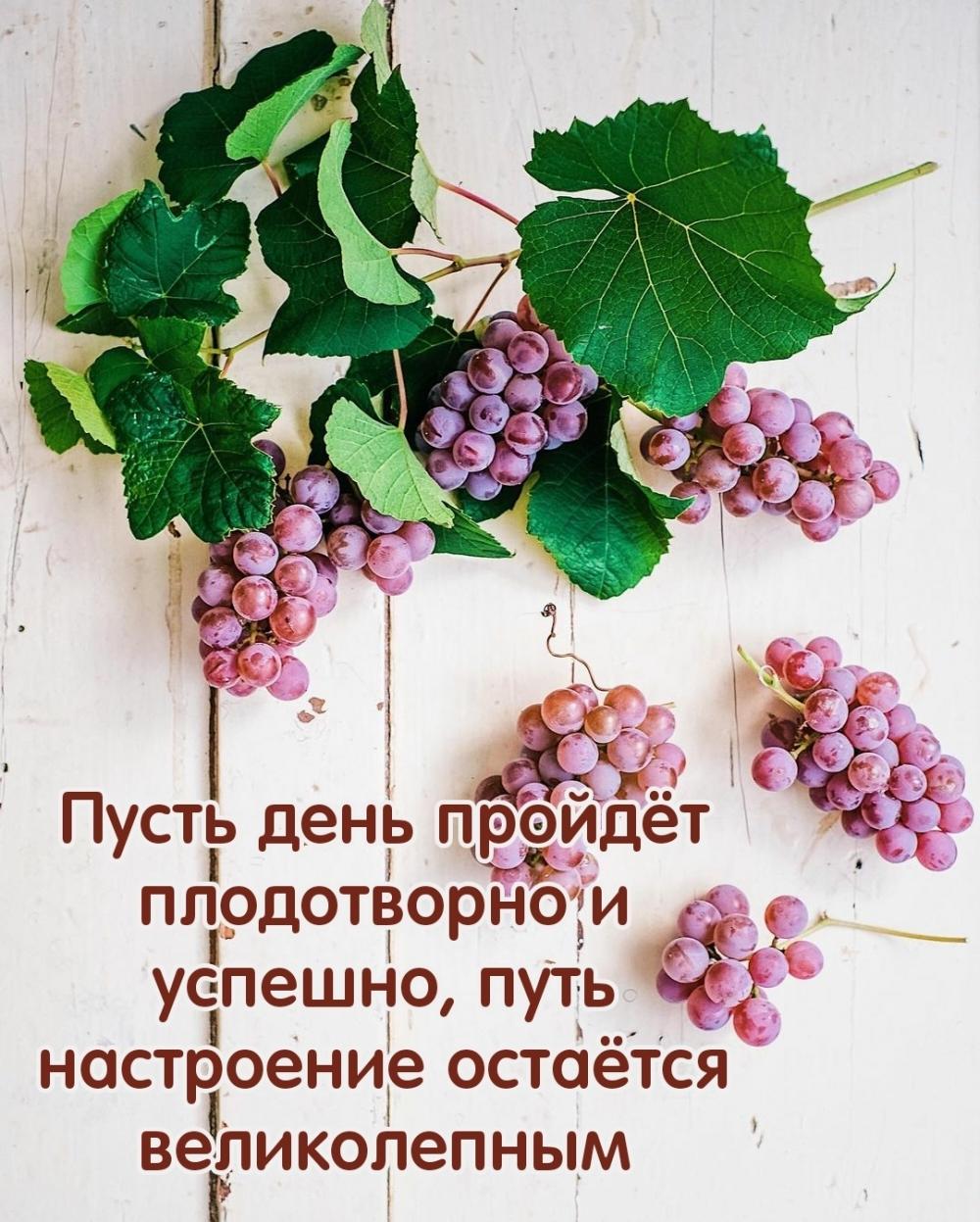 Пусть день пройдёт плодотворно и успешно
