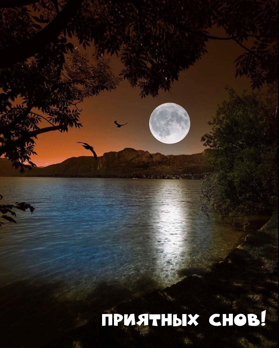 Приятных снов!