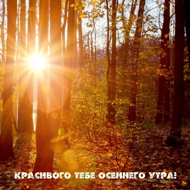 Красивого тебе осеннего утра!