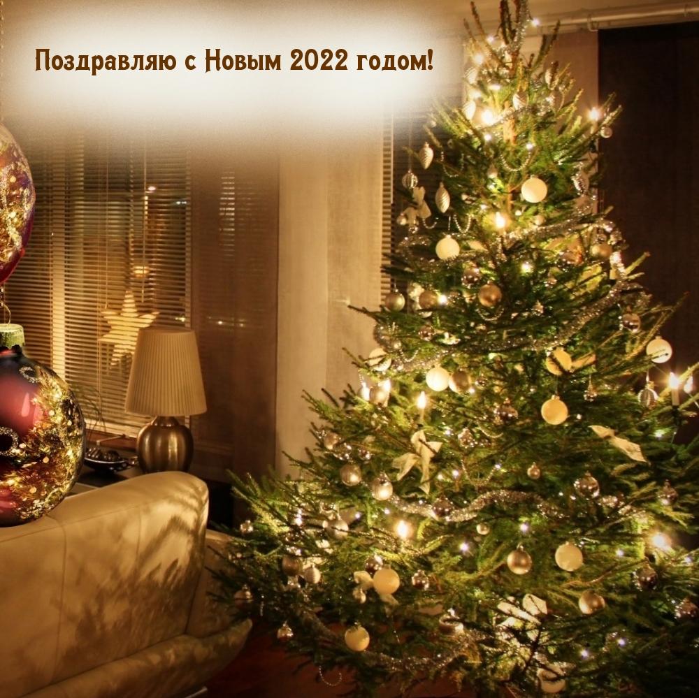 Поздравляю с Новым 2022 годом!